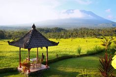 Just because flights to Bali are cheap doesn't mean the accommodation is. To help your dollar stretch we've rounded up 7 of the best budget villas in Bali. See the list: https://www.travelwithjane.com/wanderlust/bali-budget-villas-list/
