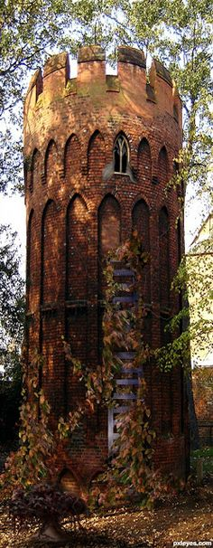 I want a Repunzel's tower on my property, like a girl's club house :) Rapunzel's Tower, Wales.