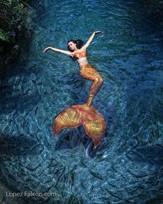 Manuela Pfannes (@ArtsandScents) | Twitter Mermaid Photo Shoot, Mermaid Pose, Mermaid Man, Siren Mermaid, Mermaid Fairy, Mermaid Pictures, Tattoo Mermaid, Fantasy Mermaids, Real Mermaids