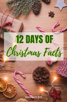 12 Days of Christmas isn't just our favorite song! check out these Historical Facts about 12 Days of Christmas. Read full article here. Christmas Facts, Christmas Truce, Christmas Trivia, Grinch Stole Christmas, Twelve Days Of Christmas, A Christmas Story, Christmas Carol, First Christmas, White Christmas
