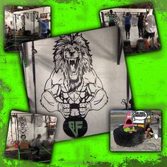 New addition to the The B3astCave! Thnks to @trucha224! Ladies go in their looking like Beauties and come out looking like Beasts! #truestory #B3astfit #crossfit #crossfitcommunity #weights #gym #athletic #health #bodybuilding #wod #roguefitness #gym #b3astfitfam #workout #fitness #instafit #fitspirational #inspirational #domoresuckless #crossfitgirls - http://www.girlsworkhard.com/new-addition-to-the-the-b3astcave-thnks-to-trucha224-ladies-go-in-their-looking-like-beauties-a