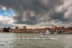 Rowing on Parramatta River   Flickr - Photo Sharing!