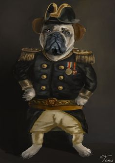#Admiral #Puppy #digital #painting #by #tomcii  #illustration  #funny  #dog   #doge  #meme  #drawing #cute #life #companion #animal #seadog #sea #captain #pirate #sailor #ship #cat Funny Friend Memes, New Funny Memes, Best Funny Jokes, Funny School Memes, Funny Quotes, Funny Pictures For Kids, Funny Animal Pictures, Funny Kids, Funny Animals