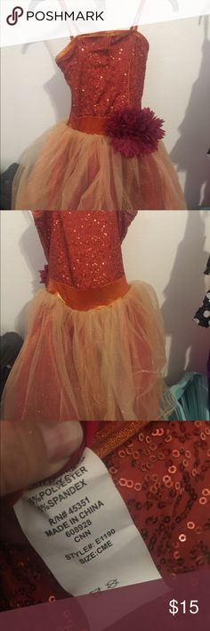 Ballet costume Girls Medium Only worn twice to perform! Cute for dress up!! Costumes Dance