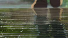 Other voices-遠い声- » 解説:「言の葉の庭」における雨の表現について