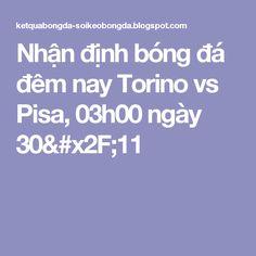Nhận định bóng đá đêm nay Torino vs Pisa, 03h00 ngày 30/11