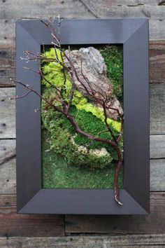 Don't have a green thumb? No need for plants in your Vertical G(art)en! Here we've used preserved mosses, bark, and branches to give the 'live feel' without the maintenance! Pictured is our Classic Kit with Dark Walnut frame. www.plantasy.us