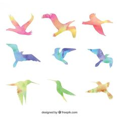 than a million free vectors, PSD, photos and free icons. Exclusive freebies and all graphic resources that you need for your projects Bird Skull Tattoo, Feather With Birds Tattoo, Bird Free, Bird Wallpaper, Bird Artwork, Bird Silhouette, Easy Watercolor, Animal Drawings, Scrapbooking