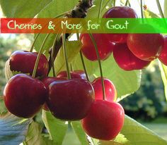 Cherries & More for Gout
