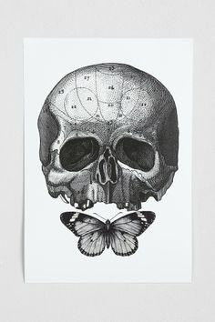 Cirque D'Art Skull & Butterfly Art Print - Urban Outfitters
