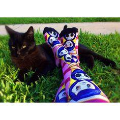 Black Cat  @the_broody_hen  #BlackCats #BlackCat #BlackKitty #Kitty #Kitteh #Kitten #ImNotBadLuck #Halloween #Alternative #Macabre #Creepy #CreepyCool #CreepyGirlsClub #Goth #Gothic #GothLife #GothGirl #Gothabilly #Emo #Vamp #Vampabilly #Psychobilly #Punk #Coraline #HenrySelick