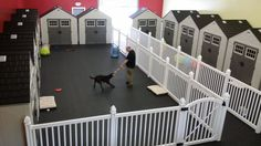 Why Dog Daycare Owners are Choosing WamBam Fence - WamBam Fence - pet resort Dog Boarding Kennels, Pet Boarding, Animal Boarding, Dog Kennels, Indoor Dog Park, Indoor Dog Fence, Dog Kennel Designs, Daycare Design, Dog Kennel Cover