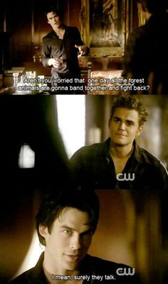 Best 25 Vampire Diaries Funny Quotes #Vampire Diaries #FUnny
