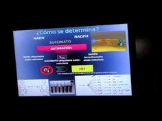 """MALASPINA 2010 : OBSERVACIONES DE R/ETS. Charla ofrecida por Federico Maldonado Uribe en el Aula de Grado de la Facultad de Ciencias del Mar de la ULPGC, el 7 de febrero de 2012. Nº 1. Más información en el Blog de la Biblioteca de Ciencias Básicas """"Carlos Bas"""": http://bibwp.ulpgc.es/carlosbas/2012/02/07/primera-charla-en-ciencia-compartida-por-federico-maldonado-hoy-martes-7/"""