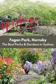 Fagan Park & Playground Galston Sydney - Adventure, baby!