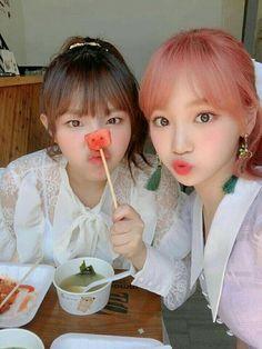 Kpop Girl Groups, Kpop Girls, Yuri, My Girl, Cool Girl, Foto Best Friend, Secret Song, Mahal Kita, Eyes On Me