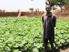 Achieving Zero Hunger requires transforming rural economies, investing in sustainable ag...