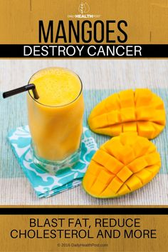 The sweet, unique, delicate flavor of a succulent mango brings the tropics to your plate. Although the tree is in the same family as poison oak and ivy, mango fruit is far from dangerous: it actually promotes human health in various ways, from digestion to immunity.