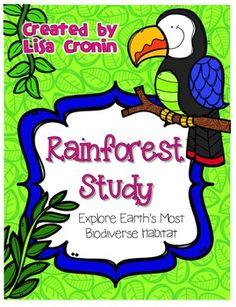 Teacher's Pet - Rainforest Fact Cards (b) - Premium Printable Game ...