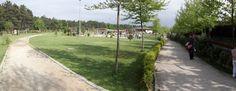 Doğa parkı