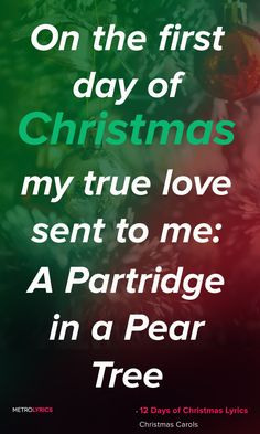 Christmas Song - 12 Days Of Christmas Lyrics | MetroLyrics