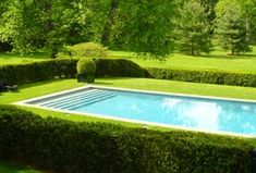 Traditional Swimming Pool with Grass, Outdoor pool, Lap pool, Inground pool, Fence, Lawn, Private backyard, Box hedge