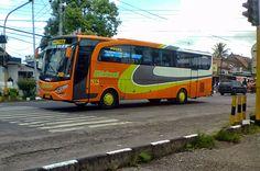 Indonesian Buses   Koleksi Foto Bus