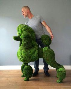 Flower engineer Andreas Verheijen 'Me & My Green Hulk' Moss poodle for Gem…