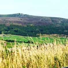 I saw the most stunning #lavender-topped hills today on my road trip #abundance