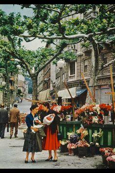 Trieste 1956