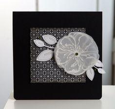 Blütenstempel: Kein Folder