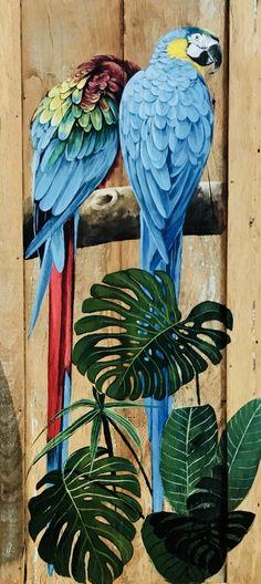 die 48 besten ideen zu bunte papageien  bunte papageien