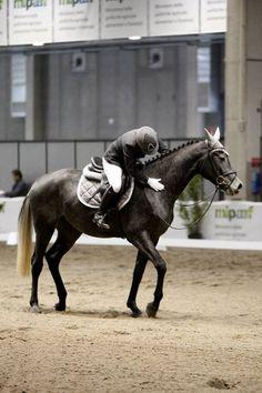 """Cavalli e umani, l'intesa è nel cuore. Studio: """"il battito si sincronizza"""""""
