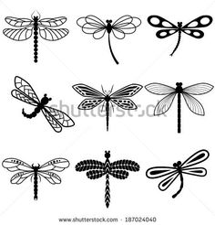 Dragonflies, black silhouettes on white background. Vector by Barmaleeva, via Shutterstock