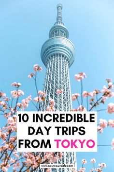 Japan Travel | Tokyo Day Trips | Best Tokyo Day Trips | Japan Itinerary | Japan Travel Itinerary | Japan Aesthetic | Japan Things to Do | Japan Places to Visit | Day Trips From Tokyo | Nara | Japan Cherry Blossoms | Tokyo Disney | Snow Monkeys | Tokyo Aesthetic | Things to do in Japan | Places to Visit Near Tokyo | Japan Travel Guide | Tokyo Travel Tips #JapanTravel #TokyoDayTrips #VisitJapan #aviewoutside