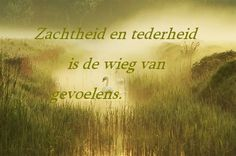 Zachtheid en tederheid...