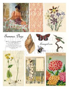 Altered Images, Altered Art, Collage Sheet, Collage Art, Arts And Crafts Projects, Vintage Ephemera, Digital Collage, Fabric Art, Botanical Prints
