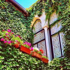 Lebanese Window, Douma, #lebanon Beautiful Sites, Beautiful Places In The World, Arabian Decor, Beirut Lebanon, Expensive Houses, Architecture Old, Moorish, Mediterranean Style, Traditional House