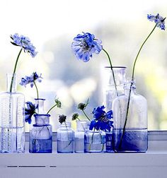 Brabourne Farm: Love .... Flowers + Bottles  - let's do this over the sink!
