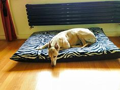 KosiPet Cheap Budget Zebra Fleece Medium Spare Cover For Dog Bed,Pet Bed ** For more information, visit now