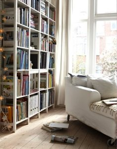 Mi sala es pequeña, así que no tienen espacio para muebles. Tengo un sofá, cortinas, y mucho libros. Yo no tengo un televisor.