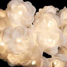 purchased (blue hydrangeas) - Flower Fairy Lights ღ