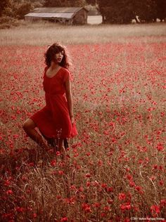 A field of red beauty!