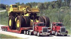 Thats one big ass truck! Thats one big ass truck! Thats one big ass truck! Big Rig Trucks, Semi Trucks, Cool Trucks, Cool Cars, Mack Trucks, Dodge Trucks, Lifted Trucks, Rolling Coal, Dump Truck