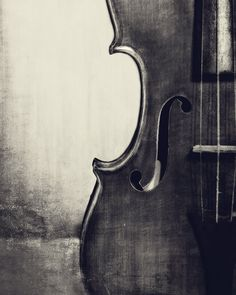 Violin Photography Violin Musical Instrument Photo Print Classical  Music Room Wall Decor Music Lover Gift Black and White Fine Art Print