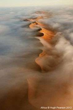An aerial view of Namib desert dunes. The dunes receive very little by way of rain, sometimes years pass between showers, but an almost daily cloak of vaporous fog provides just enough moisture to allow life to cling on.
