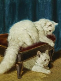 Arthur Heyer, white cats at play