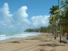 This will do just fine.  All i need is a chair and a drink!!!!   :)))))))  Puerto Rico...home to Luquillo Beach