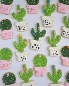 20+ Cactus Theme Party Ideas | acheerymind.com