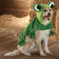 Top Paw™ Frog Costume
